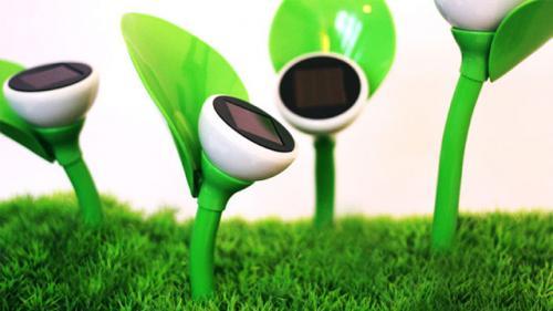 گلهای خورشیدی: شارژ روزانه و نورافشانی شبانه